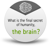 What is the final secret of humanity, the brain?