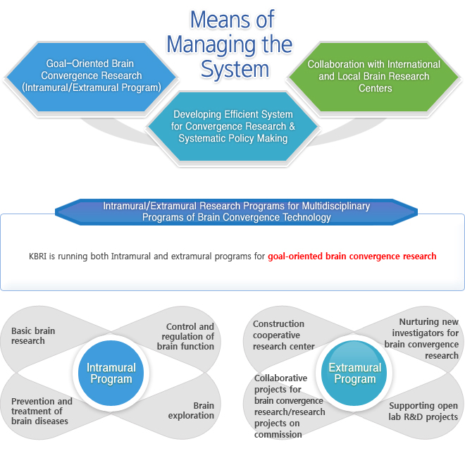 Means of Managing the System : Goal-Oriented Brain Convergence Research (Intramural/Extramural Program), Developing Efficient System for Convergence Research & Systematic Policy Making, Collaboration with International and Local Brain Research Centers